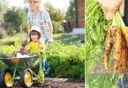 Super Useful Money Saving Tricks to Grow Your Own Garden